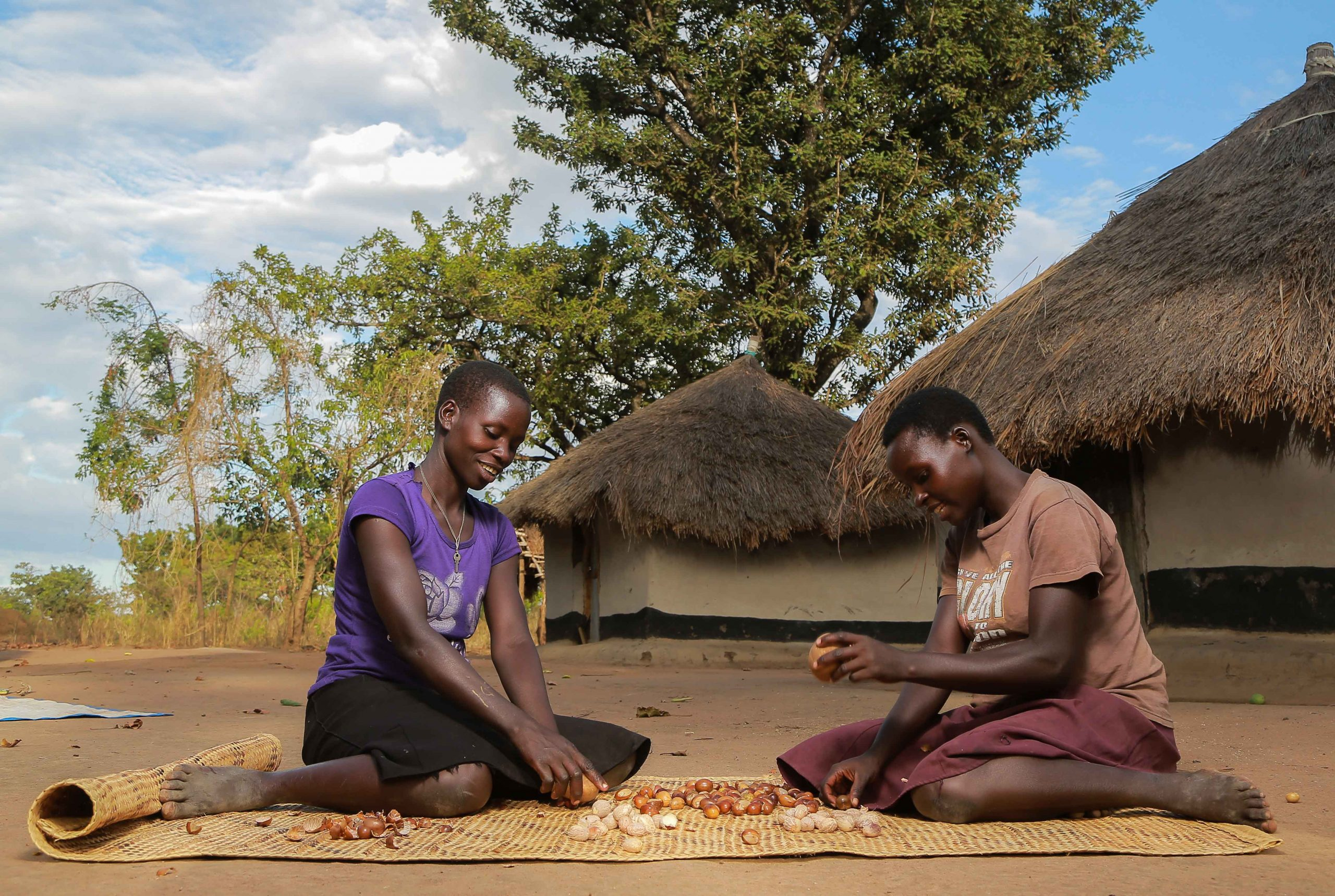 Unshelling shea nuts by hand